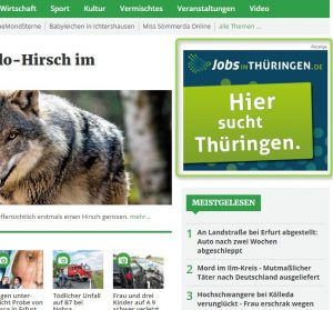 Screenshot Google AdWords Bildanzeige Displaynetzwerk
